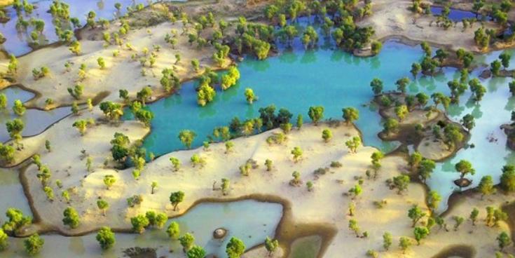 初秋塔里木河色彩斑斓风景如画