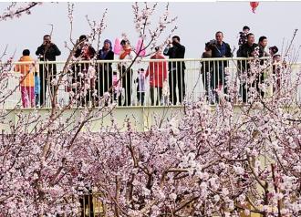 旅游:引领新疆三产大发展