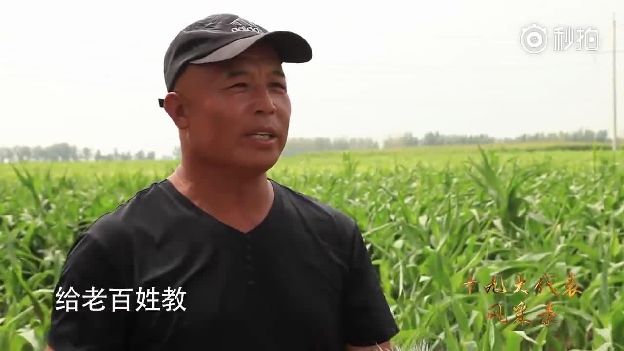 【十九大代表风采】梅园雪:这个局长每年230天在田里,为达小康走遍516个村