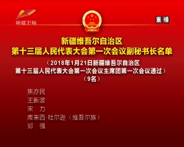 新疆维吾尔自治区第十三届人民代表大会第一次会议副秘书长名单