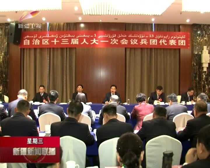 兵团代表团举行全体会议审议政府工作报告