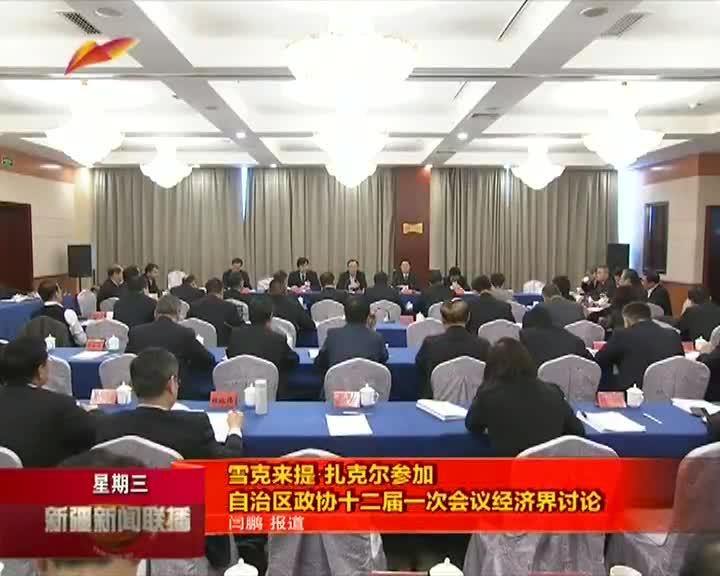 雪克来提·扎克尔参加自治区政协十二届一次会议经济界讨论