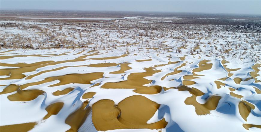 【高清组图】新疆塔克拉玛干沙漠降雪壮美如画