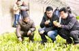 天津北辰区助农致富 不打年盹