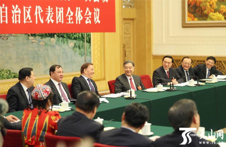 汪洋参加十三届全国人大一次会议新疆代表团审议