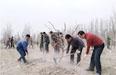 新和县:志愿服务助春耕