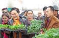 工作队发放蔬菜育苗 助力庭院经济