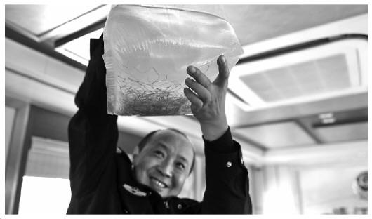急速赛车彩票小技巧:团伙非法捕捞长江鳗鱼苗牟利近千万_32人被抓获