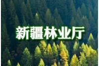 新疆林业厅