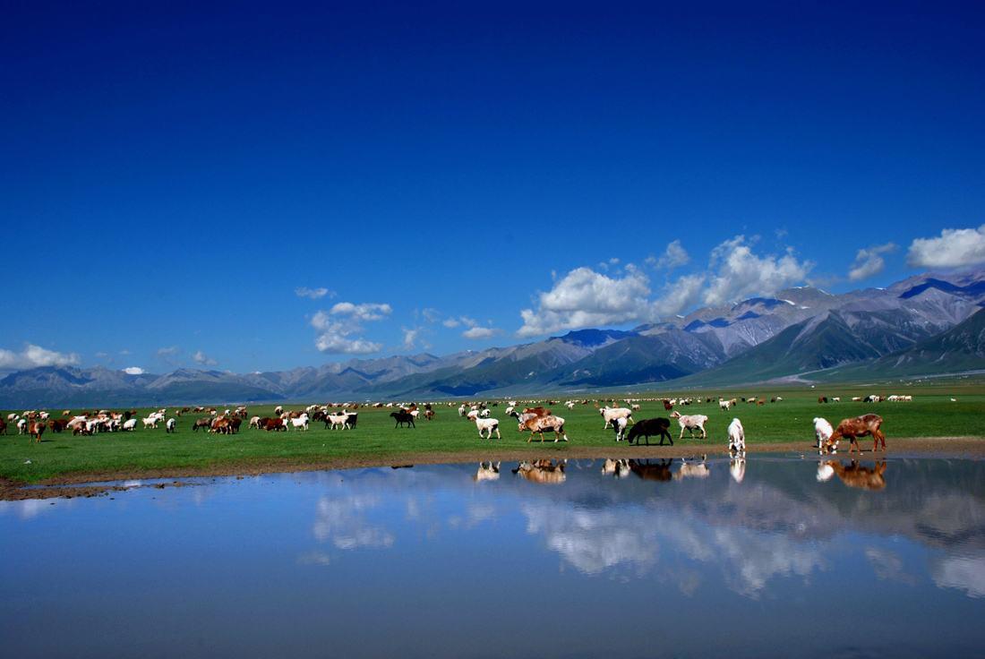 博州——新疆旅游新媒体矩阵