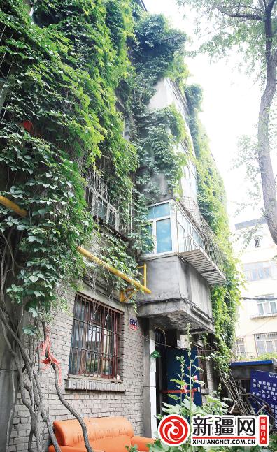 """【种下一片绿 美化一座城】乌鲁木齐:博物馆住宅区有栋""""绿房子"""""""