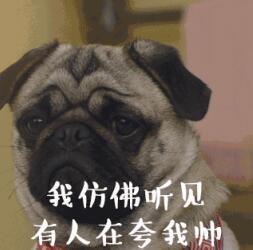 北京快乐8压大小的方法:2018高考志愿填报攻略_教你不高分低报浪费分数