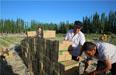 工作队帮助村民销售土豆