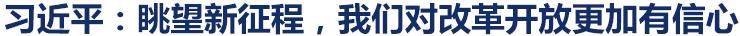 """习近平会见出席""""全球首席执行官委员会""""特别圆桌峰会外方代表"""