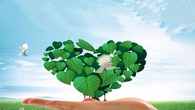 """新疆:绿色发展让矿山""""绿""""起来"""
