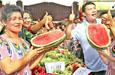 温宿县举办瓜果蔬菜评比大赛