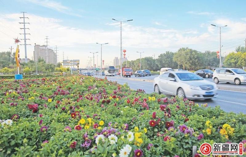 乌鲁木齐街头花团锦簇