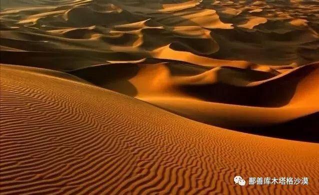 和库木塔格沙漠来场约会