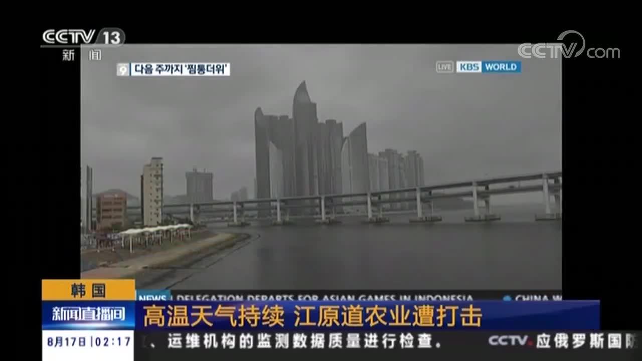 韩国 高温天气持续 江原道农业遭打击