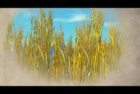(剧情)52 阿古顿巴的故事(第一季)EP06 流金币的河