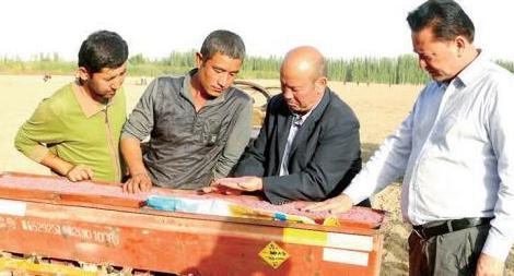 新疆冬小麦预计10月底完成播种
