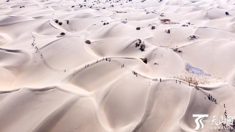 塔克拉玛干沙漠108公里徒步赛在新疆尉犁开赛