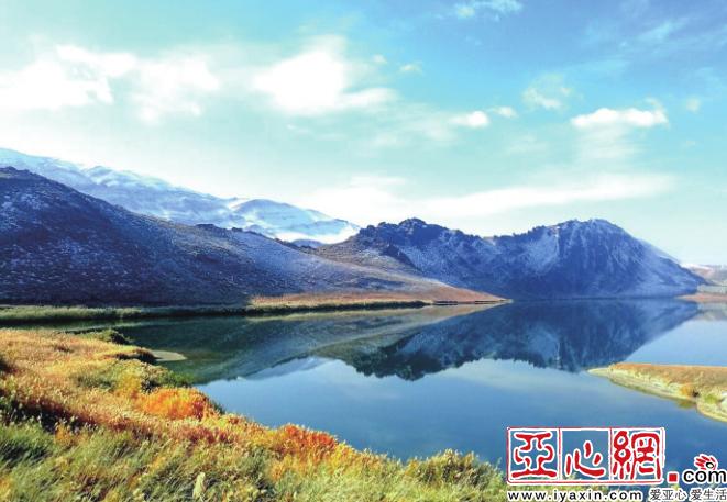 乌鲁木齐白鸟湖环境向好 水鸟成群植被繁茂