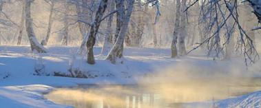 哈巴河县冬季白桦林水雾缭绕别样美