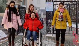 《轮椅女孩的护花使者们》