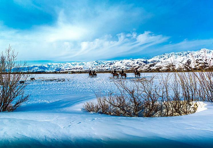 初恋水墨那拉提 重温时光与雪的故事