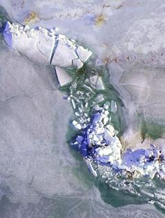 """博斯腾湖现""""推冰""""奇观"""