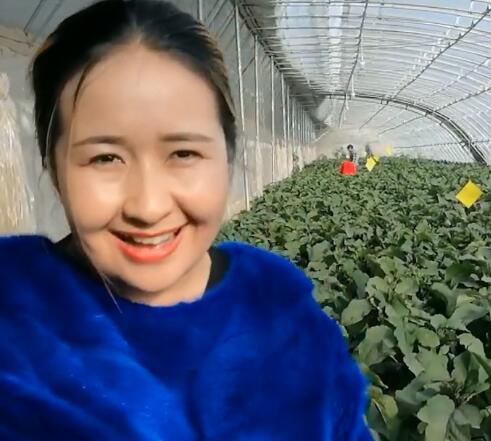我们和田的蔬菜大棚