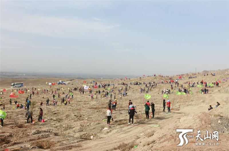 新疆第十一届全民植树节邀你一起来植树