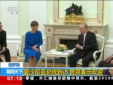 俄罗斯 爱沙尼亚总统到访 普京表示欢迎