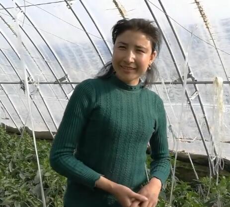 毕业的学员在辣椒生产基地就业