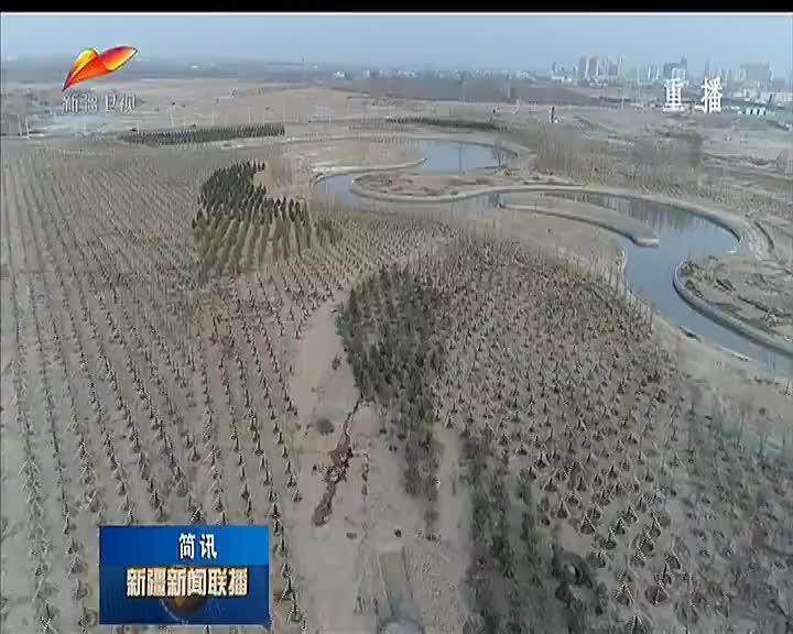 新疆今年已完成造林绿化76.7万亩