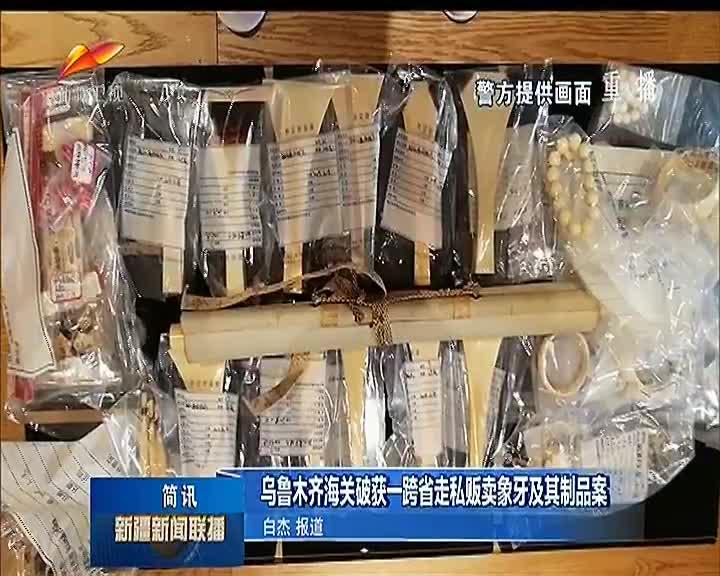 乌鲁木齐海关破获一跨省走私贩卖象牙及其制品案