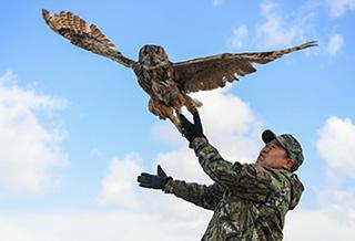 呼伦湖畔的野生动物守护者