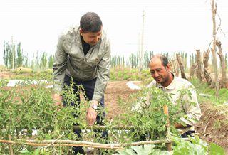 温宿县:工作队引导村民发展庭院经济