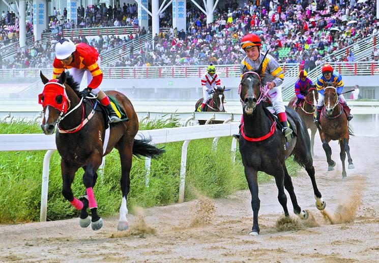 2019年中国速度赛马公开赛库尔勒站扬鞭