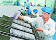 低氘水產品生產帶動貧困戶就業