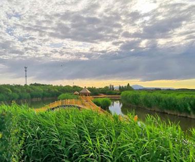 雨后新疆博斯騰湖云霞別樣美
