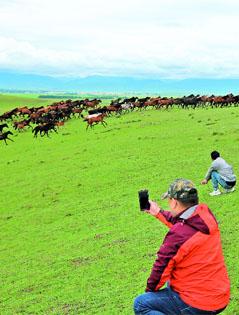 【新疆是个好地方】万马奔腾引游客