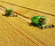 麦收季节新疆美