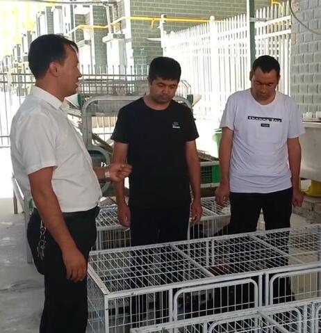 我们教培中心养殖技术班的老师在讲养鸡的相关知识