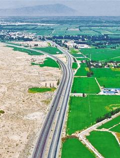 精河縣:百里綠洲鎖黃沙