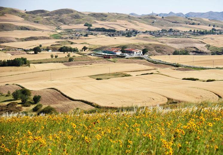 木壘縣平頂山萬畝旱田:大自然打翻的調色盤