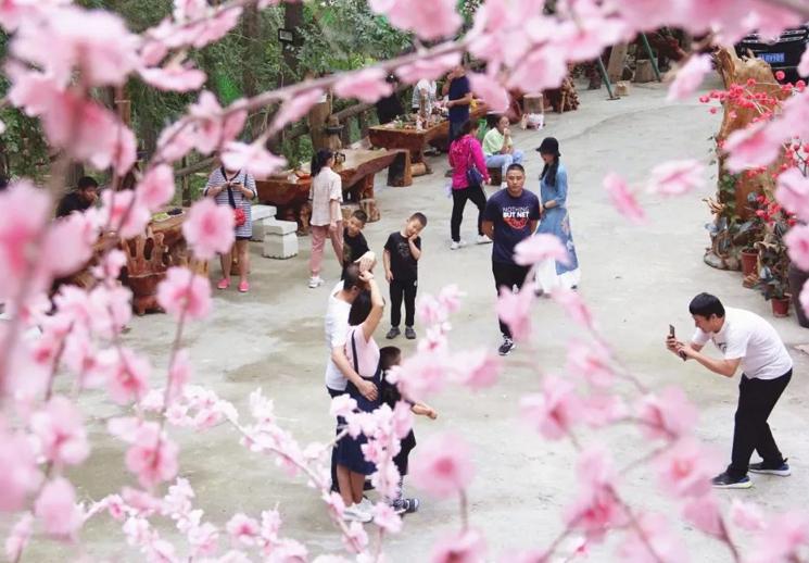 米东区:假期短途旅游热 市民偏爱近郊游