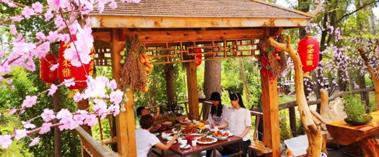 米東區:假期短途旅游熱 市民偏愛近郊游