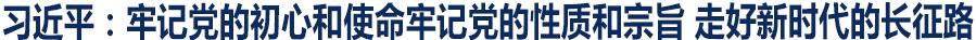 习近平:牢记党的初心和使命牢记党的性质和宗旨 走好新时代的长征路